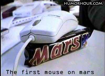 The first mouse on mars