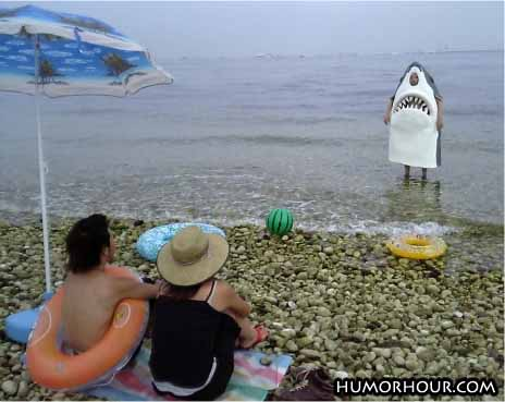 Jaws on the beach